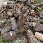 広葉樹 乾燥薪(割る前のもの)